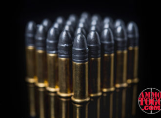 LRN Bullets – Lead Round Nose