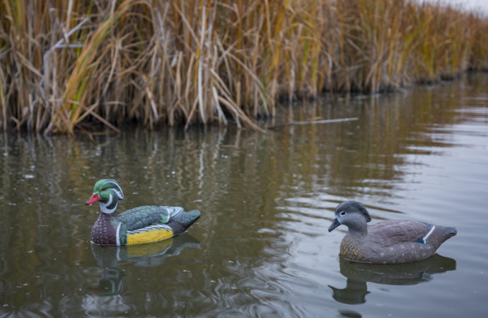 where to place your duck decoys hunting tips and tactics